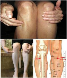 What Is Acupuncture Zu San Li – A Point of a Hundred Diseases On Your Body: Here is What Will Happen if You Massage it! Health And Nutrition, Health And Wellness, Health Tips, Health Fitness, Health Remedies, Home Remedies, Qi Gong, Alternative Health, Massage Therapy