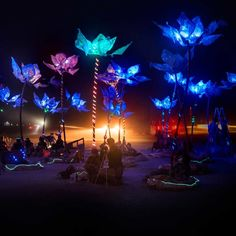 Pulse and Bloom - Interactive Art Installation - LED lights | Burning Man