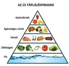 Az új táplálékpiramis - tudja meg többet az egészséges életmódról!