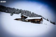 ski area -in winter we had here minus 20 celcius