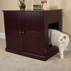 Clever! Just take a storage unit and make a whole on the side. Contains a normal litter box, but it's prettier!