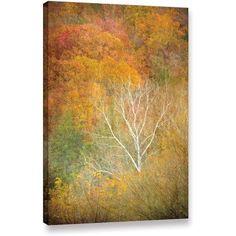 Antonio Raggio 'In Autumn' Gallery-Wrapped Canvas, Size: 16 x 24, Green