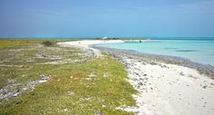 Nature reserve for birds, last chance to visit before they close it for the nesting season. Sailing Trips, Nature Reserve, Thunderstorms, Grenada, Maya, Around The Worlds, Birds, Seasons, Night