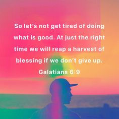 Scriptures, Bible Verses, Galatians 6 9, Right Time, Whats Good, Giving Up, Blessed, Good Things, Let It Be