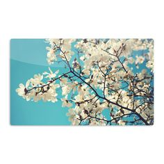 Kess InHouse Sylvia Cook 'White Magnolias' Aqua White Artistic Magnet