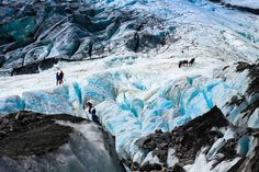 De Fox, Franz en Josef gletsjers, Nieuw-Zeeland