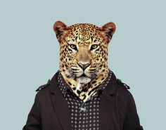 Leopard---Panthera-pardus-copia