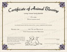 A very special non-denominational/universal blessing is written on the certificate itself. (or use your preferred blessing, prayer or dedication. Universal Life Church, Graduation Quotes, Certificate, Prayers, Blessed, Names, Writing, Pets, Day