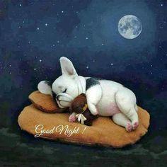 Cute Good Night, Good Night Gif, Good Night Sweet Dreams, Good Night Moon, Good Night Image, Cãezinhos Bulldog, Bulldog Quotes, Funny Bulldog, French Bulldog Tattoo