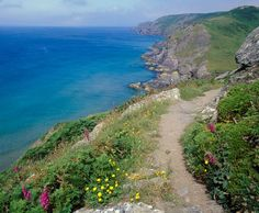 coastal walk cornwall england,nice here and scarily, Devon And Cornwall, Cornwall England, Devon England, The Places Youll Go, Cool Places To Visit, Uk Destinations, Uk Holidays, England And Scotland, Roadtrip