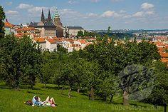 Strahov Park, Prague You're Beautiful, Prague, Google Images, Places Ive Been, Parks, Dolores Park, Wanderlust, Gardens, Fun
