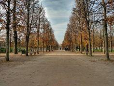 i-giardini-delle-tuileries-a-parigi_7965526.jpg (500×375)
