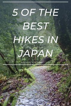 Hiking In Japan Of The Best Hikes You Can Do) - Backpackingman Japan Japan, Japan Trip, Japan Post, Camping And Hiking, Hiking Trails, Japan Travel Guide, Travel Tips, Down From The Mountain, Day Trips From Tokyo