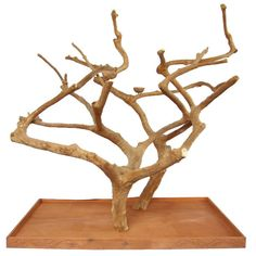 Double Java Wood Tree
