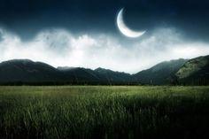 Il calendario lunare del mese di maggio. Tutti i lavori e i trapianti da fare