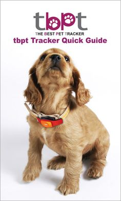 ios pet tracking gps collar