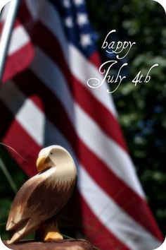 * I love July 4th! Fly our flag every day...Not just on holidays! *