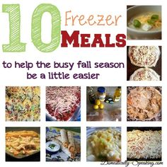 10 Freezer Meals - perfect for the busy fall season