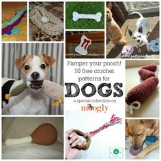 Gone to the Dogs! 10 FREE crochet patterns for pampered pooches - crafty collection on Mooglyblog.com! #diy #crafts #pets