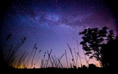 The stars are shining in Marysville, California. Photo by Karim Iliya. Moon Setting, Central Valley, Pretty Pictures, Pretty Pics, California Love, Unique Gardens, Perfect World, Milky Way, Northern Lights