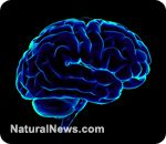 Supplements that give your brain the boost it needs / via naturalnews.com / great info in this article