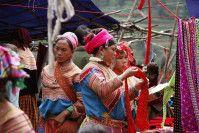 Vietnam Laos - Laos Cambodge Vietnam du Nord Bach ha - Sapa du 20 au 28 septembre Laos de Muang Khua à Luang Prabang du 30 septembre au 7 octobre Laos de Vang Vieng à Vientiane du 7 au 11 octobre Laos Tha Khaek du 12 au 14 octobre Laos Pakse, Champasak...