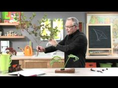 How To Arrange Flowers: Ikebana Flower Arrangement! - YouTube