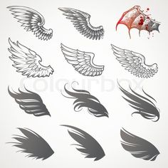 Stock vector of 'wing, vector, silhouette'