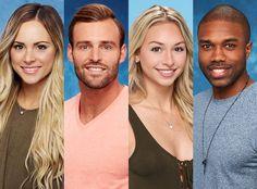 'Bachelor In Paradise' Season 4 Cast Revealed  #reality #tv #bachelor