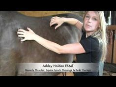 Horse Massage: Warm-up Techniques for the Topline