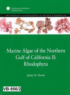 Marine algae of the northern Gulf of California II : Rhodophyta / James N. Norris