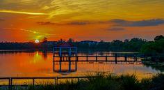 Picture taken at Baldwin Park, Orlando Florida Baldwin Park, Alfred Stieglitz, Orlando Florida, Fine Art Photography, New Day, Fine Art America, Amazing, Amanda, Sunset