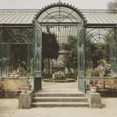 """Mi piace"": 1,605, commenti: 17 - the land gardeners (@thelandgardeners) su Instagram: ""@thelandgardeners in the Botanic Gardens in Palermo #palmheaven #glasshouse #botanicgardens"""