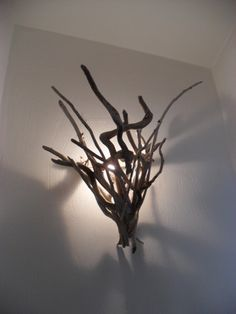 Branched light shade for the wall.