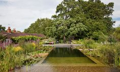 Homes & gardens: cool by the pool – the rise of the swimming pond
