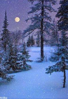 Beautiful Christmas Scenes, Beautiful Nature Scenes, Beautiful Gif, Beautiful Landscapes, Winter Images, Winter Pictures, Christmas Tree Gif, Christmas Reflections, Winter Painting