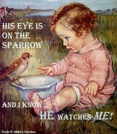 His eye is on the sparrow, how much more us?