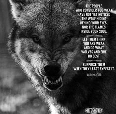 Famous Wolves Quotes Images Please visit our website, we have a lot of funny and interesting photos. Wolf Pack Quotes, Wolf Qoutes, Lone Wolf Quotes, Be Wolf, Wolf Love, Wisdom Quotes, True Quotes, Words Quotes, Quotes Images