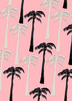 Palms!