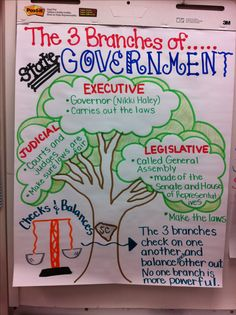 Here's a nice anchor chart on branches state of government. (This is example is for South Carolina, but this model will work for most states.)
