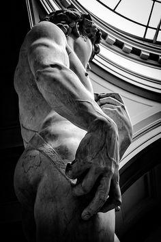 David, by Michelangelo Michael Angelo, Italian Renaissance, Renaissance Art, Angel Sculpture, Sculpture Art, The David Statue, Michelangelo Sculpture, La Pieta, Image Deco