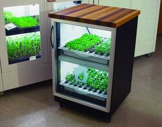 Urban cultivator - computerized system to grow herbs and veggies in your kitchen, under the counter, like a dishwasher.
