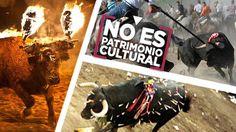 Petition · El Toro de la Vega, el Toro de Medinaceli y el de Coria son ilegales. ¡Firma para que el Congreso acabe con ellos! · Change.org
