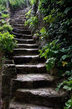 39 New Ideas For Outdoor Entryway Stairs Stairways Garden Stairs, Stone Stairs, Nature Aesthetic, Stairway To Heaven, Fantasy Landscape, Garden Paths, Stairways, Belle Photo, Pathways