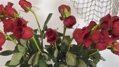 How to revive wilted roses - shows how to cut the woody stems Wilted Rose, Wilted Flowers, Dried Flowers, Fresh Flowers, Rosen Arrangements, Flower Arrangements, Rose Vase, Flower Vases, Sugar Flowers