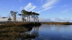 Scotland's Best Bed and Breakfasts on the North Coast 500 route. #Loch #Assynt http://www.scotlandsbestbandbs.co.uk/en/north-coast-500_49986/