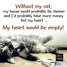 **3 cats, that is! :)