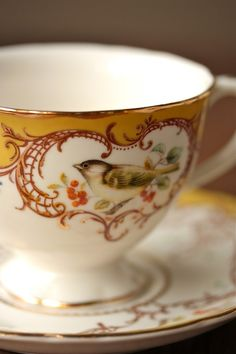 Gold and white bird teacup!