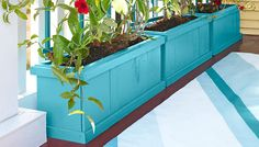 Planter box and trellis on a front porch