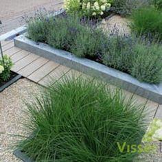 mixture of decking and shingle Strakke & Robuuste voortuin Front Gardens, Small Gardens, Outdoor Gardens, Modern Gardens, Modern Landscaping, Backyard Landscaping, Landscaping Software, Dream Garden, Home And Garden